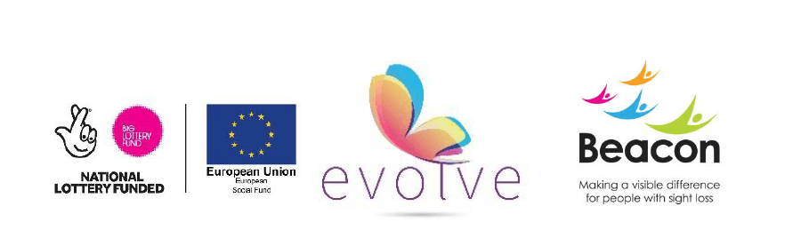 Evolve Employment Project